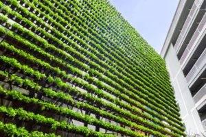 Investimenti responsabili, l'approccio ESG rende le performance competitive