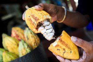 ETF, nel primo trimestre la combo vincente è petrolio-cacao