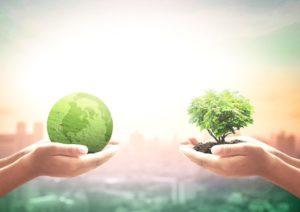 Green economy, allineare il sistema finanziario allo sviluppo sostenibile
