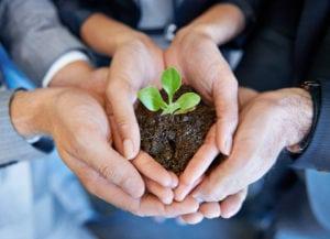 Investimenti ESG, il testimone sta per passare dalle azioni alle obbligazioni