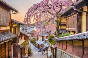 Fioritura fuori stagione per la Borsa di Tokyo