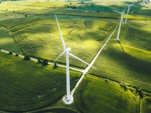 Come scegliere le aziende sostenibili