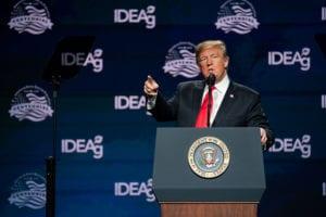 Muro Usa-Messico: fondi dal taglio degli aiuti ai paesi esteri