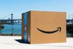 Amazon, il paladino dell'ambiente che non ti aspetti