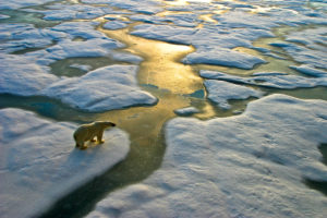 Conti alla Rovescia - Fermare i cambiamenti climatici