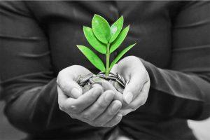 Un piano in quattro punti per la finanza sostenibile