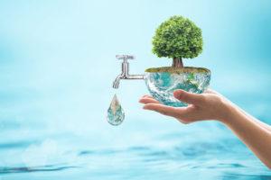 Sostenibilità, i consumatori lanciano la volata per le aziende