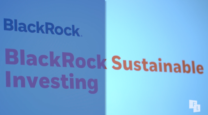 financialounge.com Value in Values, la strategia sostenibile di BlackRock
