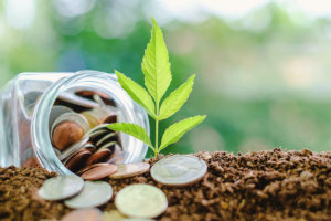 Economia green, l'Unione europea introduce le istruzioni per l'uso