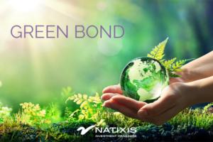 Video - Green bond, un mercato in crescita esponenziale