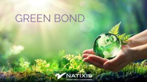 Green bond, un mercato dal grande potenziale