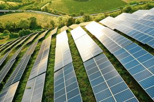 Rinnovabili, Schroders vede occasioni brillanti su tutta la filiera del solare