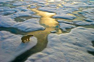 Schroders: non abbassare la guardia sul riscaldamento globale