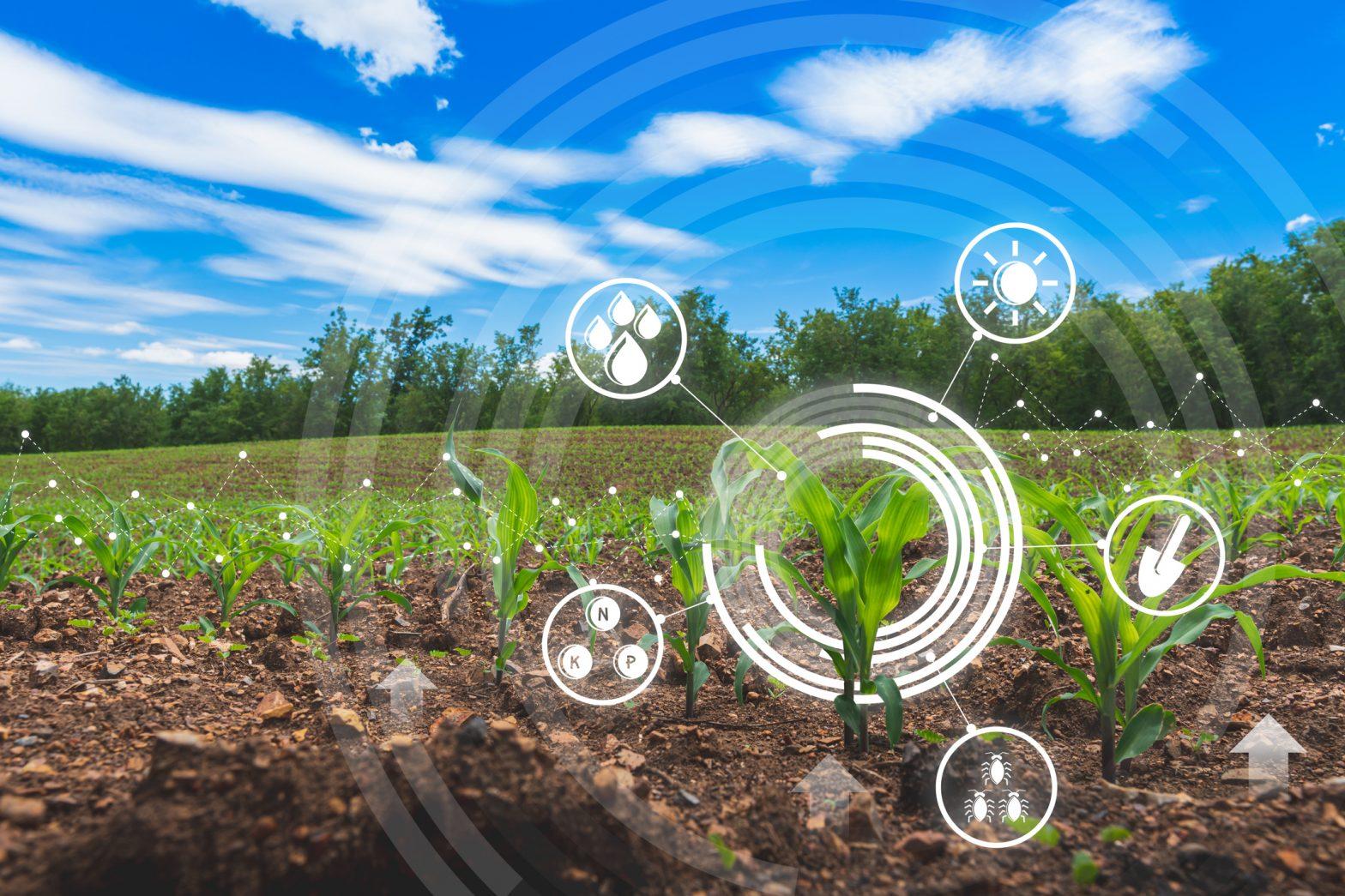 financialounge.com Il futuro dell'industria alimentare tra sfide e opportunità