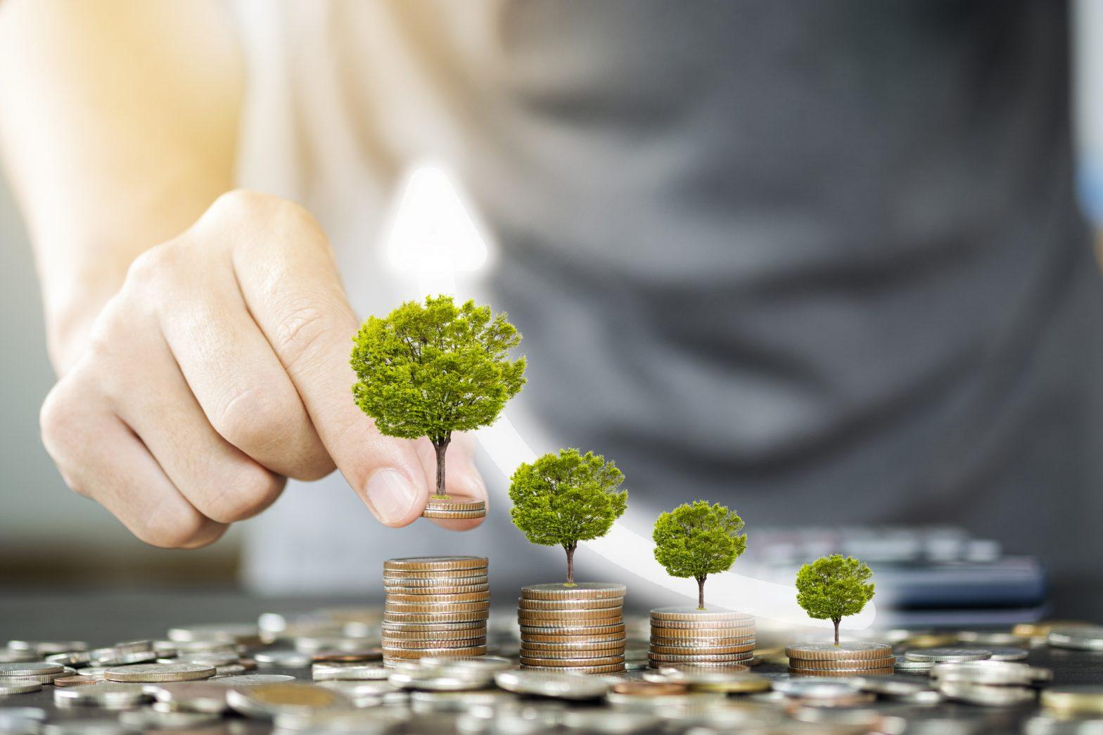 financialounge.com NN IP: green bond ottima alternativa per gli investitori grazie a stabilità e performance